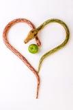 яблоко snakes 2 Стоковые Изображения RF