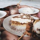 Яблочный пирог, ветвь хлопка и зефир стоковые фото