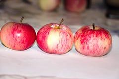 3 яблока в ряд стоковая фотография rf