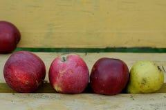 3 яблока и одна груша на стенде Стоковое фото RF