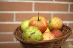 Яблоки внутри корзины Стоковое Фото