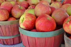Яблоки в корзинах бушеля Стоковое Изображение RF