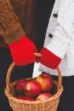 Яблоки в корзине Стоковое Изображение