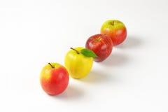 яблоки зрелые Стоковые Изображения RF