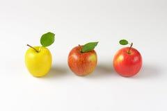 яблоки зрелые Стоковая Фотография