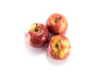 яблоки изолировали красный цвет Стоковое фото RF