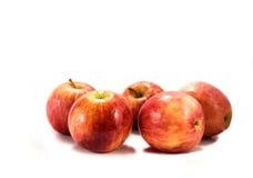 яблоки изолировали красный цвет Стоковые Изображения