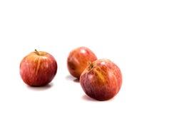 яблоки изолировали красный цвет Стоковые Фотографии RF