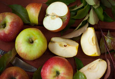 Яблоки и ветвь дерева с зелеными листьями Стоковая Фотография