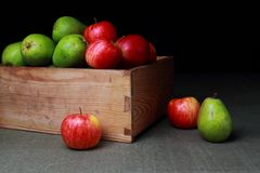 Яблоки и груши в деревянной коробке Стоковые Изображения