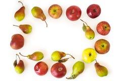 Яблоки и груши изолированные на белизне Стоковые Изображения RF