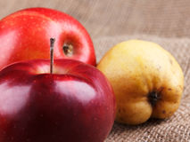 Яблоки и груши Стоковое Фото