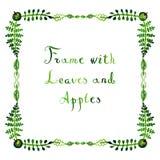 Яблоки и листья акварели vector стиль рамки наивный Стоковая Фотография