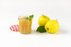Яблоки и соус яблока Стоковое Изображение RF