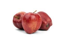 яблоки красные зрелые 3 Стоковые Изображения