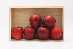 яблоки красные стоковое фото rf