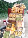 Яблоки, манго, виноградины, дыни и абрикосы Стоковое фото RF