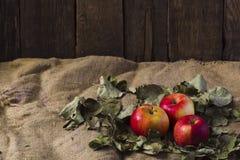 Яблоки на дерюге Стоковое Фото
