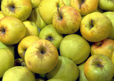 Яблоки на дисплее Стоковые Изображения RF