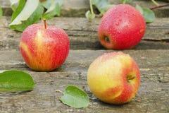 яблоки падают вода 3 Стоковая Фотография