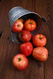 Яблоки разливая от ведра стоковые фото