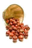 Яблоки разлитые от корзины бушеля Стоковое фото RF