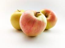 яблоки свежие Стоковые Изображения RF