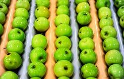 Яблоки сортируя и пакуя Стоковые Фото