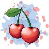 Яблоки стиля чернил и акварели Стоковые Фотографии RF