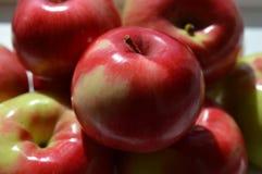 Яблоки холма Стоковое Изображение