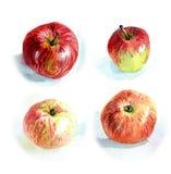 Яблоки #2 Стоковое Изображение