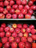 Яблоки Стоковые Фото