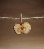 Яблоко высушило с clothespeg Стоковое фото RF