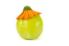 Яблоко в цветке Стоковые Изображения RF