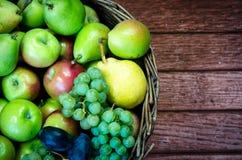 Яблоко, груша, слива и виноградина Стоковая Фотография
