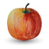 Яблоко изолированное на белом фоновом изображении, вектор акварели Стоковая Фотография