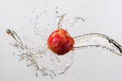 Яблоко и выплеск сока изолированные на серой предпосылке Стоковые Фотографии RF