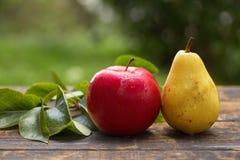Яблоко и груша Стоковая Фотография
