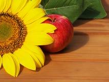 Яблоко и солнцецвет Стоковое Изображение RF