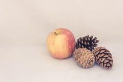 Яблоко и pinecones на белой предпосылке Стоковые Фотографии RF