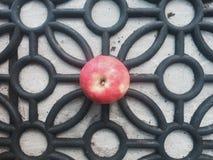 Яблоко на monochrome картине Стоковые Фото