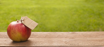 яблоко органическое Стоковые Изображения RF