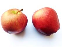 Яблоко от Таиланда Стоковое фото RF