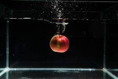 Яблоко падая в воду Стоковое Изображение RF