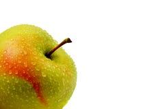 Яблоко при изолированная роса Стоковые Изображения