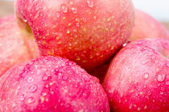 яблоко свежее Стоковые Фотографии RF