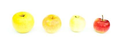 Яблоко стоит в линии изолировано Стоковое Изображение RF