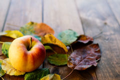 Яблоко с листьями Стоковая Фотография