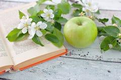 Яблоко с книгой sprig Стоковое Фото