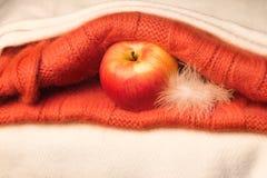 Яблоко с пером в ткани Стоковая Фотография RF